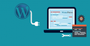 5 Best Database Plugins for WordPress In 2019