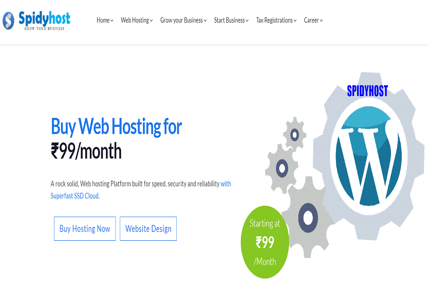 spidyhost-web-hosting-pay-per-month